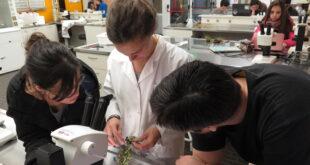 La CONEAU acreditó por 6 años la Licenciatura en Biología de la UNTDF