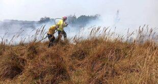 Tratan en comisión un proyecto para proteger terrenos de incendios intencionales