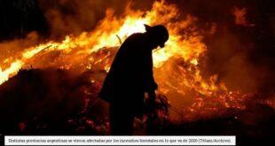 Buscan prohibir la venta de los predios que hayan sufrido incendios forestales