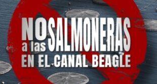 """Prohibición de Salmoneras: """"desde el MPF impulsamos y defendemos este proyecto que protege nuestro ecosistema marino"""""""