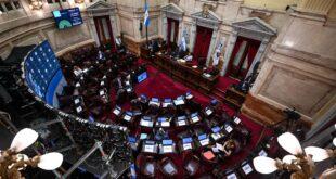 """El oficialismo convirtió en ley el """"impuesto a la riqueza"""" en el Senado"""