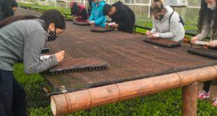 Dieron comienzo las Primeras Colonias Ecológicas en Rio Grande